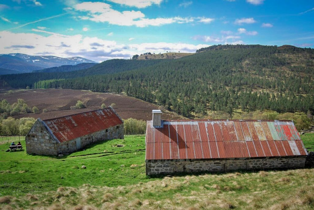 Two traditional buildings in the Scottish countryside with corrugated iron roofs