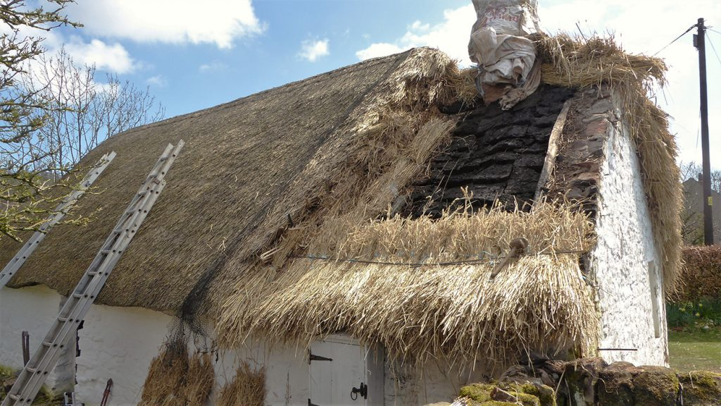 The thatched roof of Cruck Cottage with a hole in it in need of repair