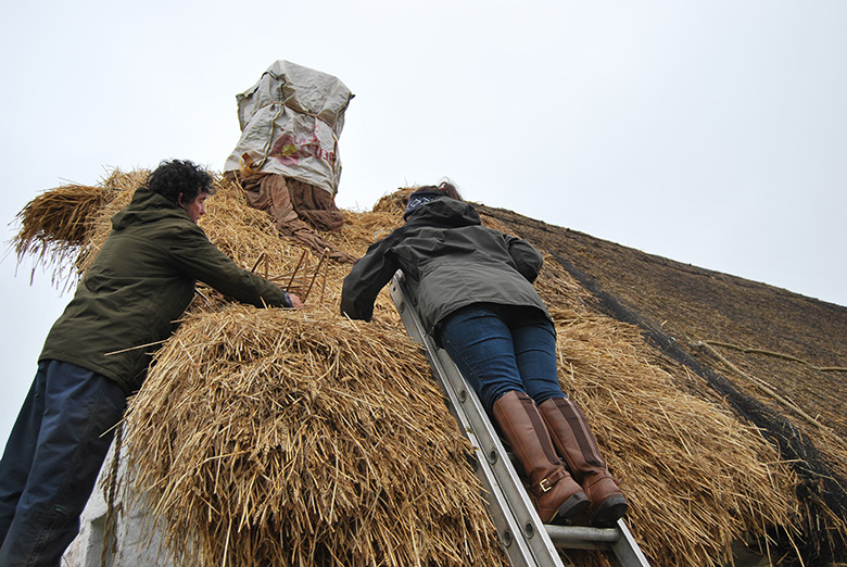 Two thatchers get to work thatching the roof of The Cruck Cottage