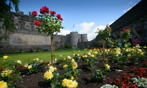 Hidden gems in Scotland's historic gardens